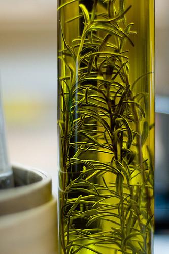 aceite de romero para el cabello