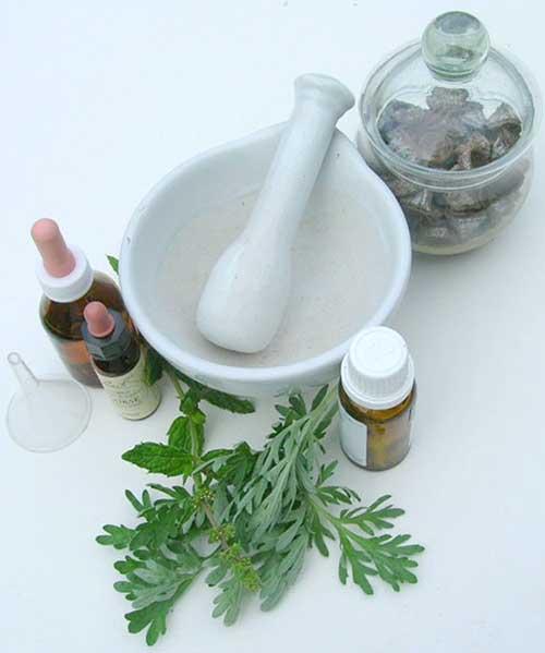 ruda medicinal