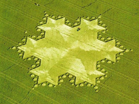 Circulo Crop - Fractal