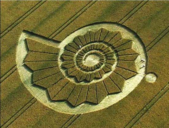 Círculo Crop - Proporción Aurea