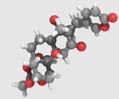 molécula de Daigremontianina