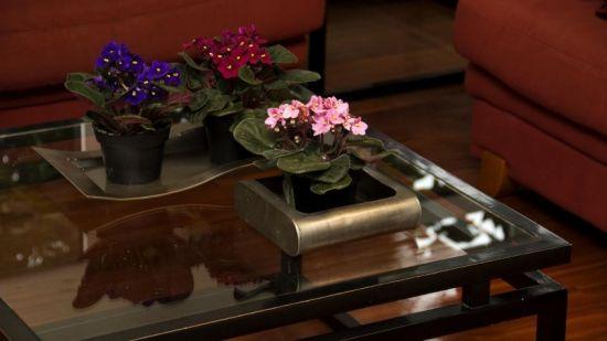 centro de mesas con flores vivas