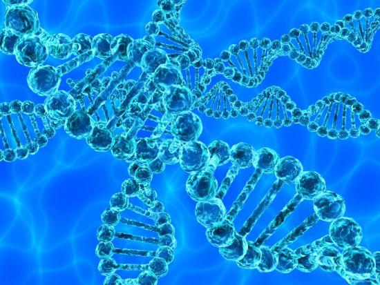 Factor Rh Negativo - ADN
