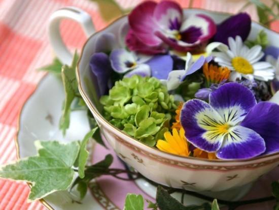 Flores comestibles - Ensalada con Geranios