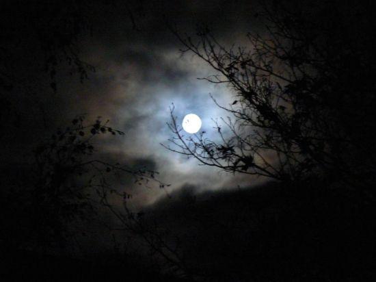 luna llena efectos