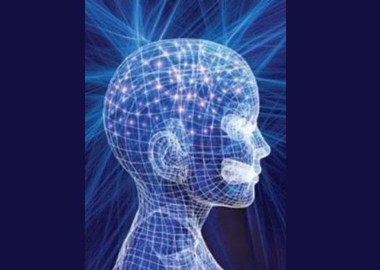 Memoria Celular - Nino