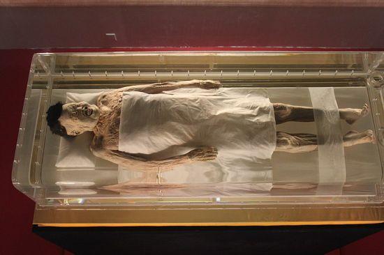 momia de la dama de dai, museo