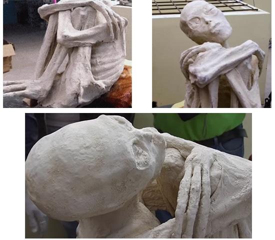 Momia de Nazca