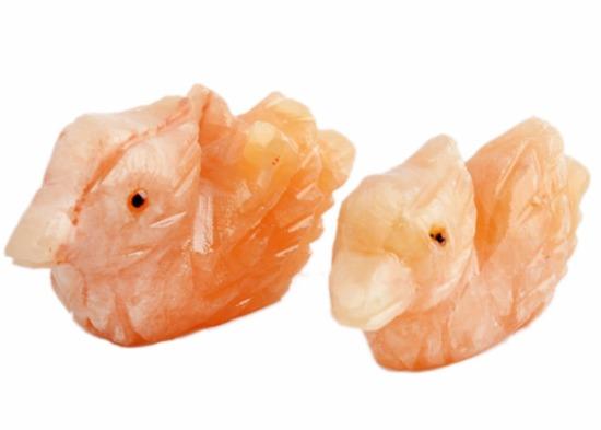 Pato mandarin - Jade