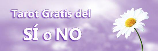 tarot del si o no gratis