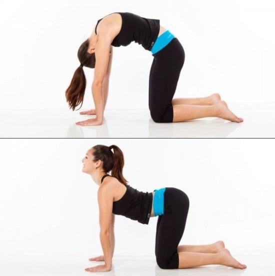Postura de Yoga - El gato y la vaca